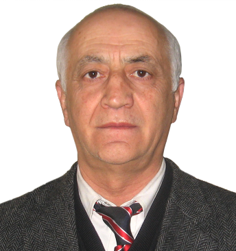 Professor, Ph. D. Teimuraz Gochitashvili